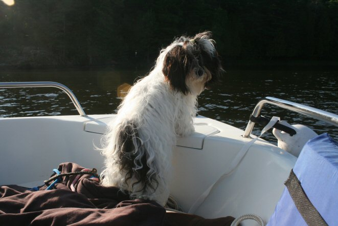 My first boat ride, I'm 13 months old!