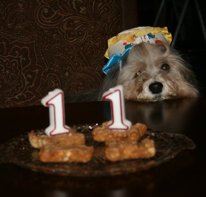 I'm 11 years old now!!!